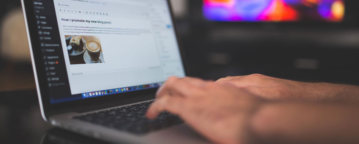 développement internet CMS wordpress